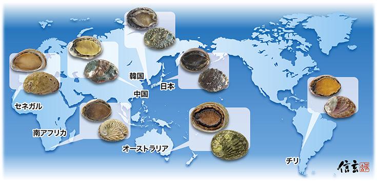 信玄食品は、あわびがあるなら行きます!世界各国どこにでも。